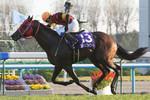 tsuchiura2010-11-21