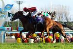 tsuchiura2011-11-20