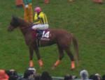tsuchiura2012-04-14