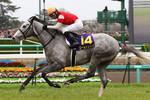 tsuchiura2012-04-15