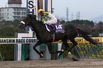 tsuchiura2012-12-02