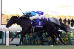 tsuchiura2012-12-09