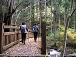 tsuchiura2013-01-28