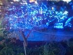 tsuchiura2013-11-29