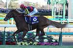 tsuchiura2013-12-22
