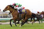 tsuchiura2014-04-13