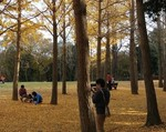 tsuchiura2014-11-28