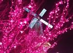 tsuchiura2014-12-22