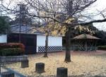 tsuchiura2016-11-25