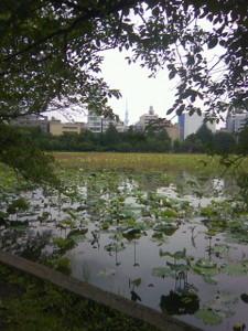yamanouta2011-06-10