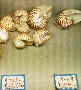 yaneurao2007-02-24