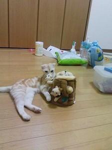 yaneurao2007-08-16