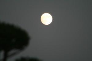 2007年「中秋の名月」(17:49