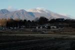 野良は、すっかり冬景色…。(28.12.6)