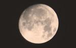 天頂にかかる「仲秋十四日」のお月さま