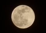 「臘月十六夜」のお月さま。(31.1.21)