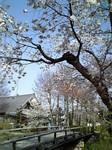yokohama-kukan2006-05-09