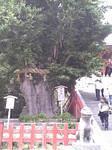 yokohama-kukan2006-06-16