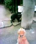yokohama-kukan2006-08-01