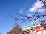 yu-mo2013-01-10