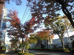 yusei20002012-11-08
