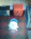 zonemode2005-12-09